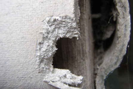 Asbestos Identification Asbestos Removal Services